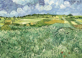 Vincent van Gogh Plain on Auvers