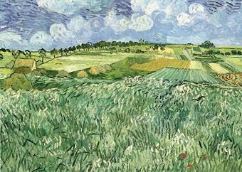 Vincent van Gogh Plain on Auvers