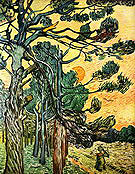 Vincent van Gogh Fir Woods at Sunset 1889