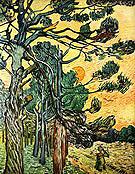 Vincent van Gogh Fir Woods at Sunset 1889