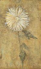 Piet Mondrian Upright Chrysanthemum against a Brownish Ground 1900