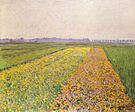 Gustave Caillebotte The Gennevilliers Plain Yellow Fields 1884