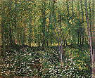 Vincent van Gogh Trees and Undergrowth 1887