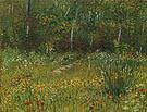 Vincent van Gogh A Park in Spring 1887