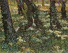 Vincent van Gogh Undergrowth 1889