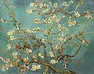 Vincent van Gogh Almond Blossom February 1890