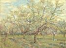 Vincent van Gogh White Orchard 1888