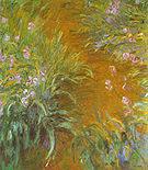 Claude Monet The Path Through the Irises 1916